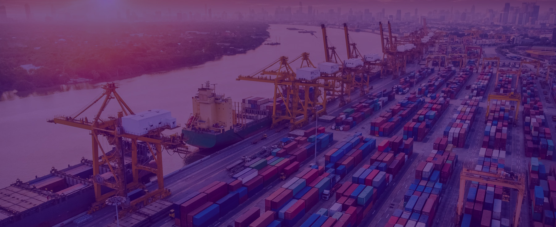 POrt and Terminal Development